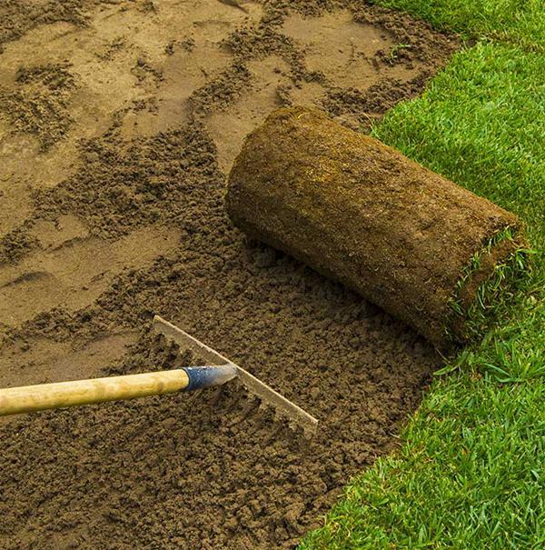 ProBlend Turfing Soil image